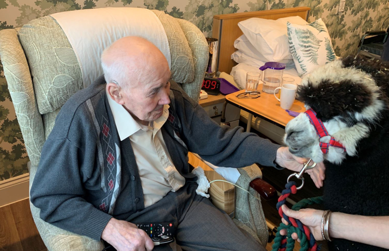 Residents at Oakdale care home in Poole enjoyed a visit from two special guests – Guinness and Greyfriars Rufus the alpacas.